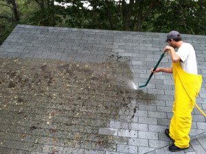 How Much Does Roof Cleaning Cost