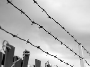 How Much Does Barbed Wire Fence Repair Cost