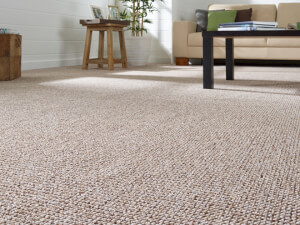 How Much Does Carpet Stretching Cost