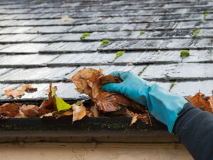 How Much Does Gutter Cleaning Cost