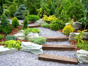 How Much Does It Cost To Install Garden Landscapin