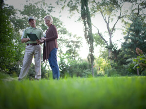 How Much Does Lawn Aeration Cost