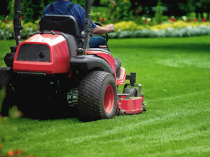 How Much Does Lawn Maintenance Cost