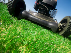 How Much Does a Lawn Mowing Service Cost